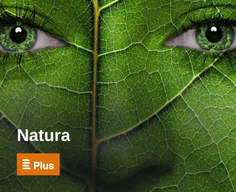 Natura Podcast